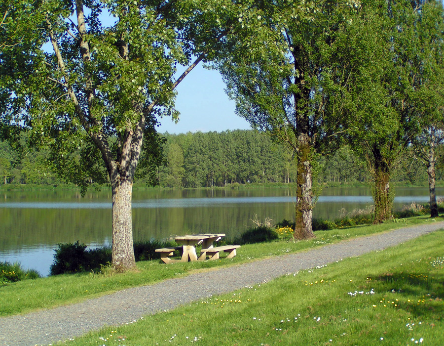 table-pique-nique-au-bord-lac