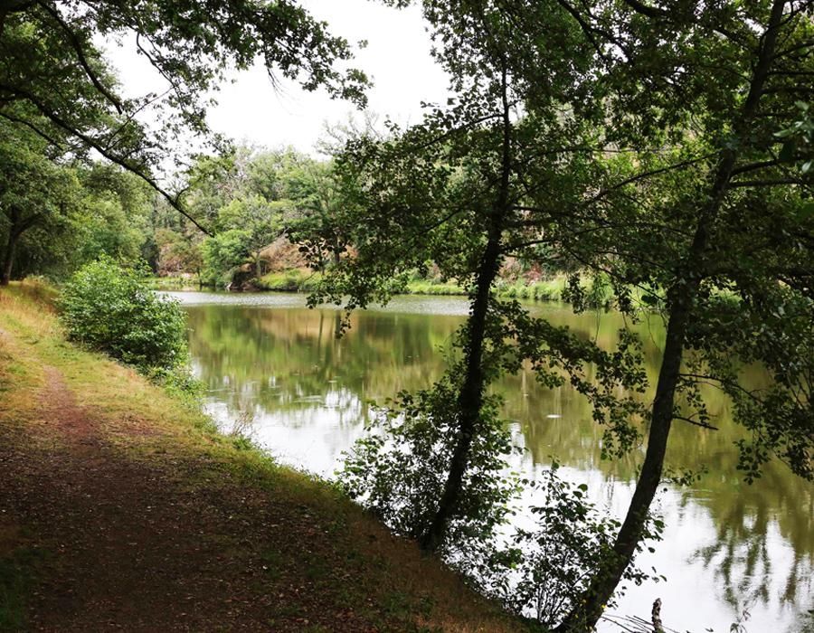 camping-au-lac-d-hautibus-argentonnay